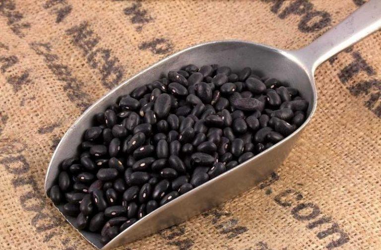 juodosios pupelės